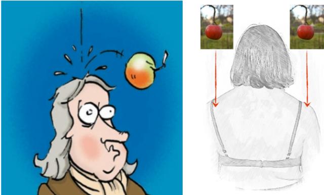 pomme Newton épaules